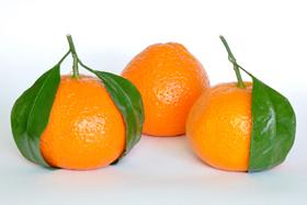Mandarine : mieux la connaître pour mieux l'apprécier