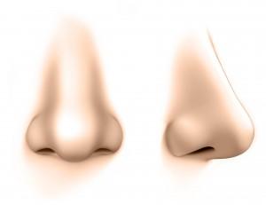 olfactothérapie-nez